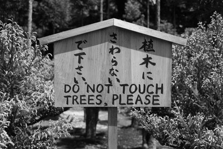 Do NOT touch the trees
