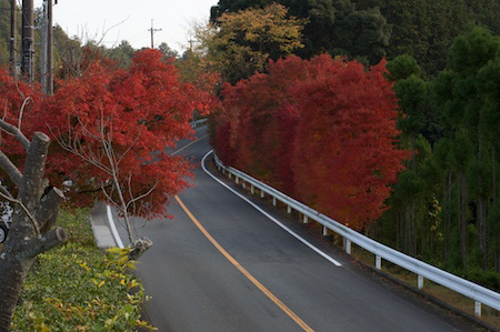 One view along the scenic route in Kyoto