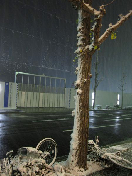 Snowing in Nagoya