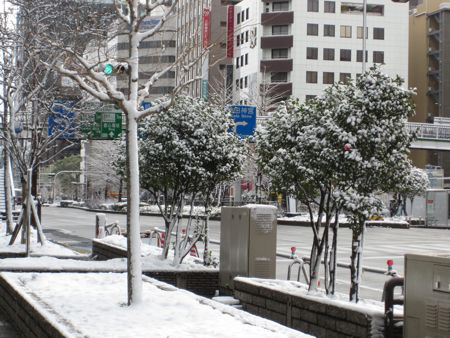 Snow in Nagoya