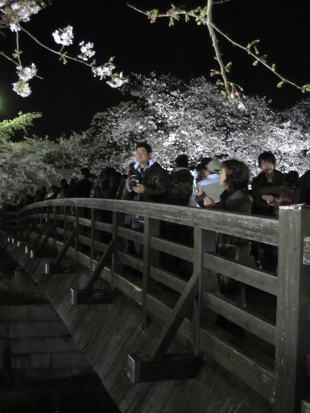 Sakura 2010 - Yamazakigawa