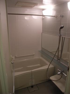 Shower / bath area