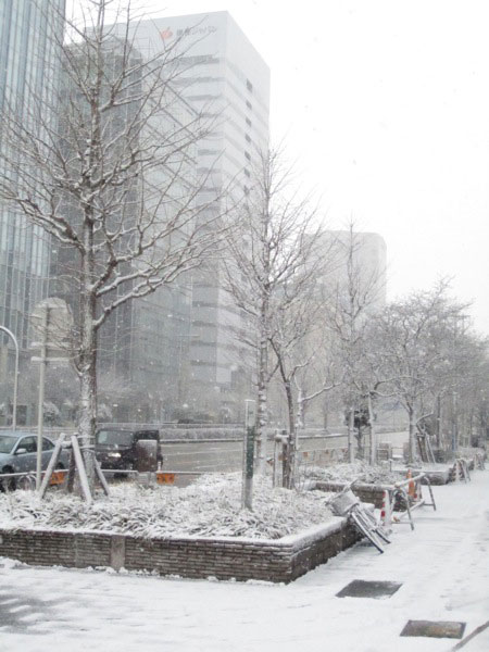 2011 snow in Nagoya