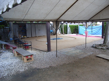 The training ring