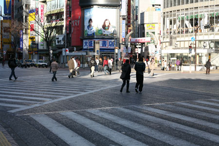 Orderly Crossing at Shibuya, January 1, 2009
